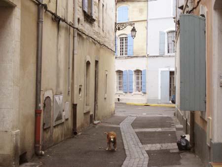 アルル街歩き。どこをとっても絵になりますなぁ