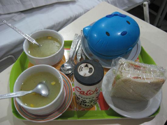 インドで食中毒になったので夫婦そろって入院してきました