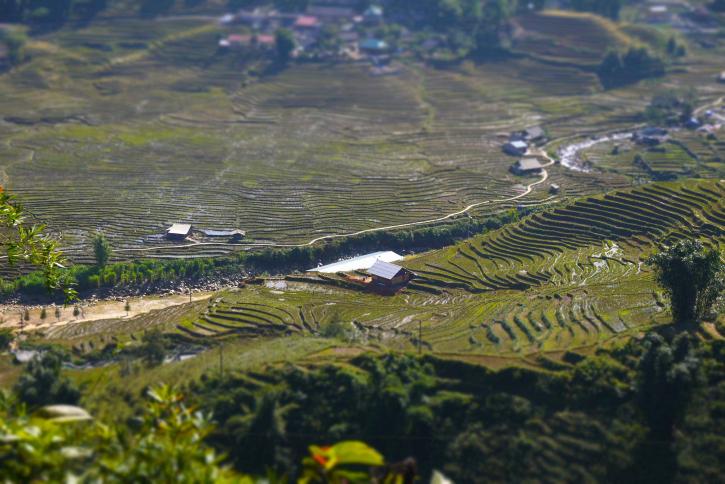 タバン村へ
