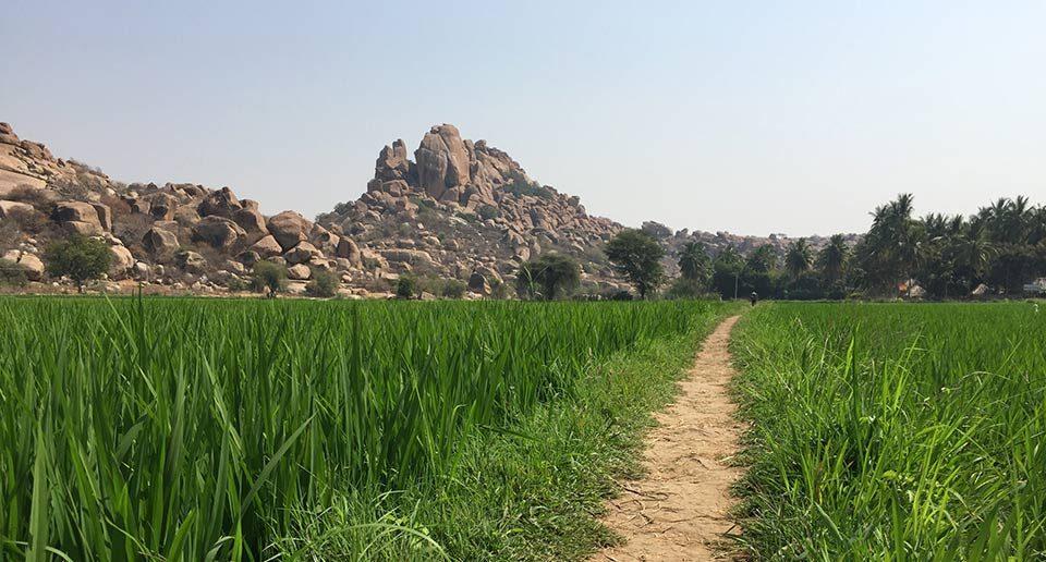 インド南部のおすすめスポット!ハンピは奇岩とヒンドゥー寺院、そして音楽の町