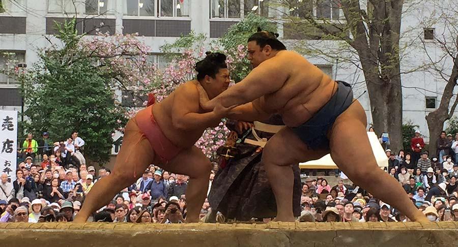 平成29年靖国神社奉納大相撲