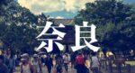 ノープラン&車中泊で楽しむ奈良町散歩!ベタな寺社仏閣訪問と町屋のお店めぐり