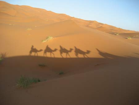 メルズーガの砂漠 1~灼熱のラクダツアーへGO!