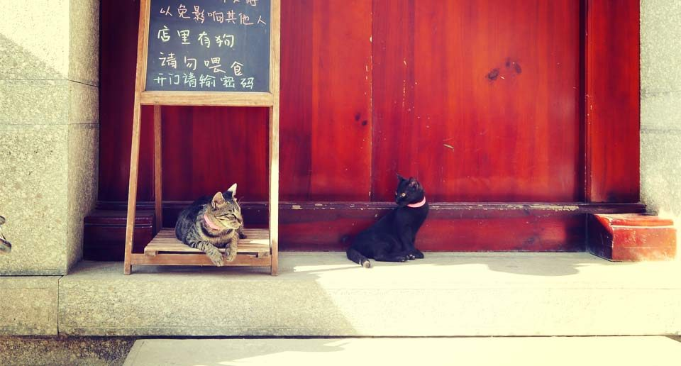 【中国雲南省】バックパッカーを魅了する町、大理の古城エリアを散策