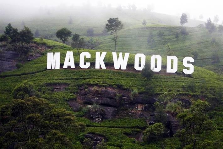 Mackwoods museum